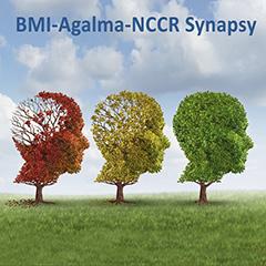 BMI Agalma Synapsy poster
