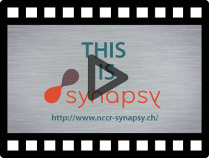 synapsy 3-min video ENG
