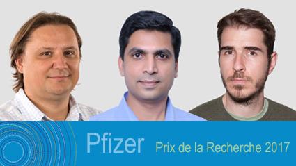 Pfizer prize 2017