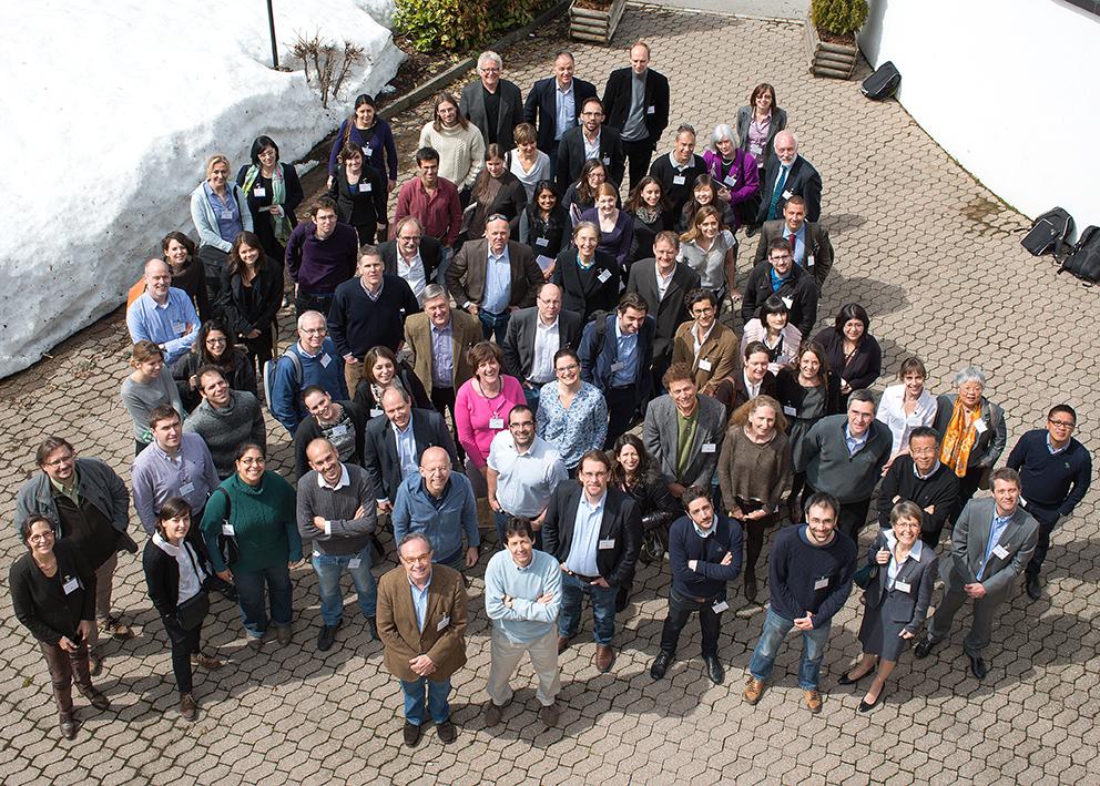 synapsy group 2013