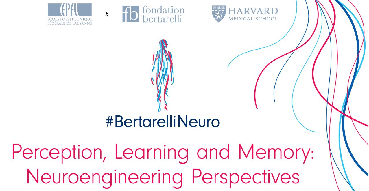 Perception, learning and memory: Neuroengineering perspectives