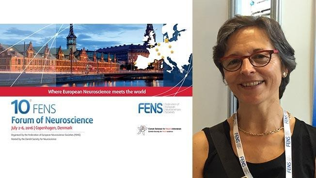 Prof. Carmen Sandi nominated President-elect of the FENS