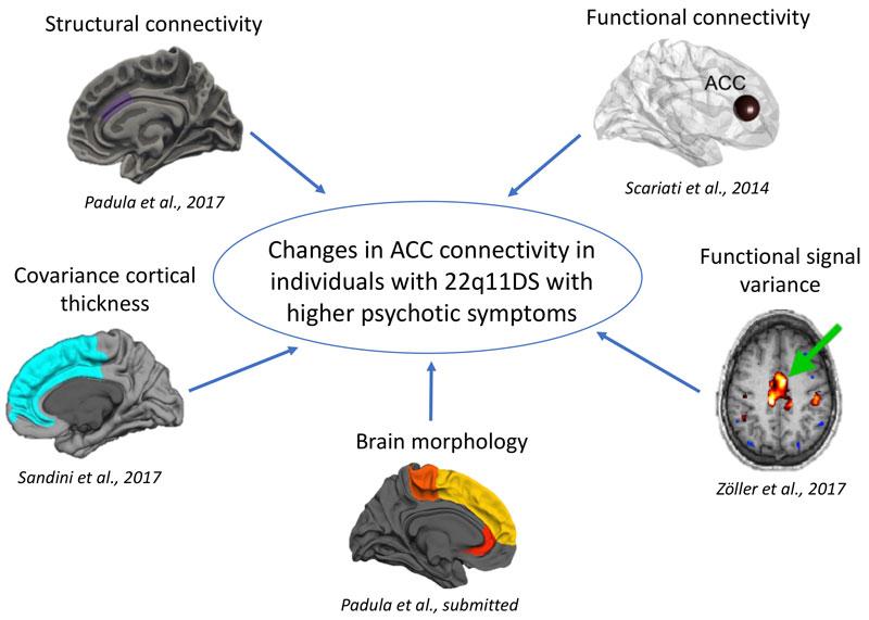acc connectivity