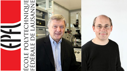 Two Synapsy project leaders nominated at EPFL