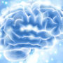 Antioxidants to heal the brain in psychosis?