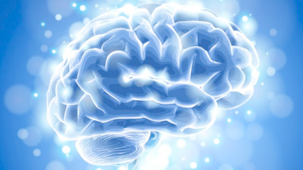 Boosting the brain