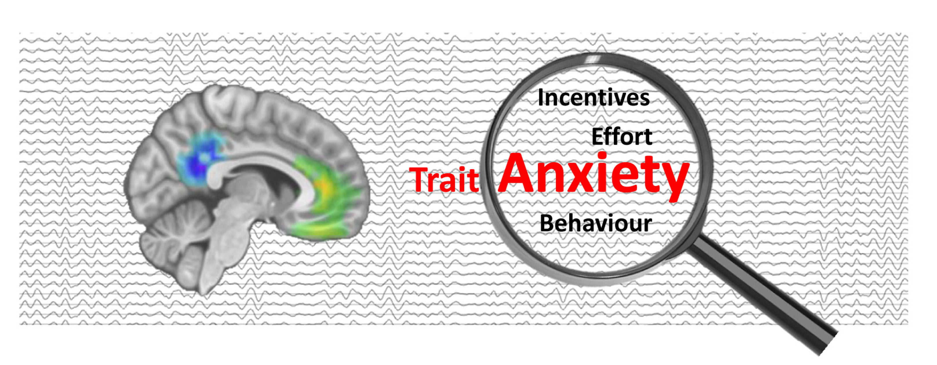 Identification of a behavioral and neural signature of trait anxiety related to differences in effortful motivated behavior