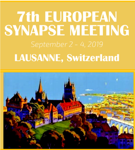 The European Synapsy Meeting 2019 Is Taking Place at Lausanne